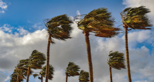 Santa Clarita Wind Santa Ana Winds Wind Advisory Red Flag Warning