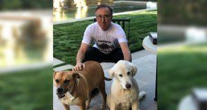 Carl Goldman - In Quarantine with his Pets